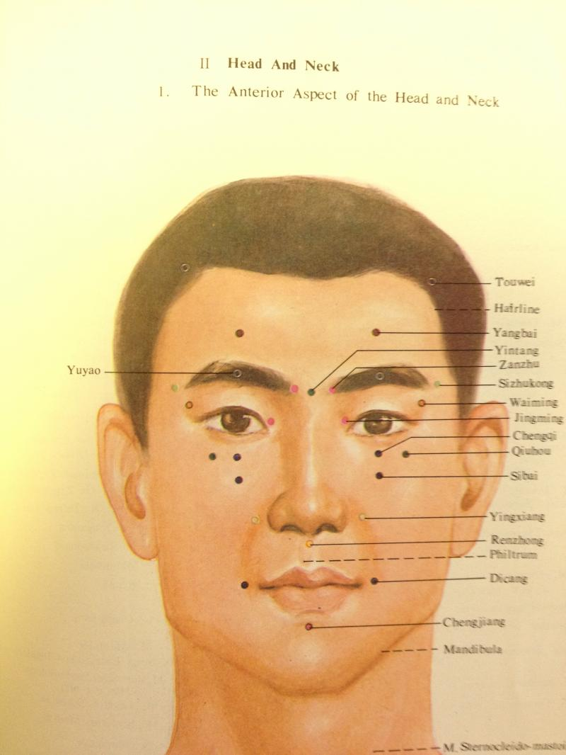 acupuncture points of the head